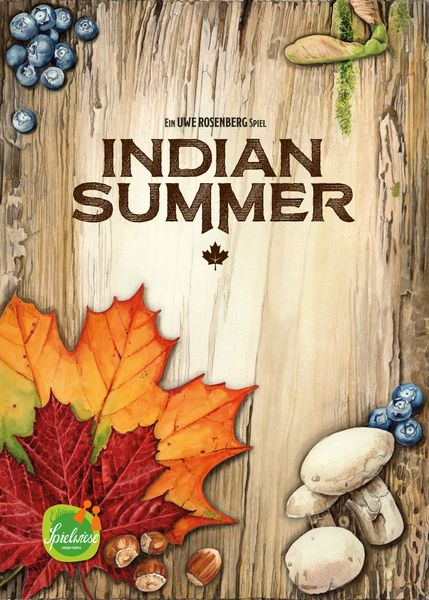 Indian Summer game cover